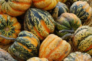 essential foods for fall